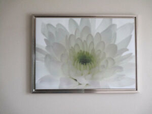 Bouclair Waterlily Wall Canvas