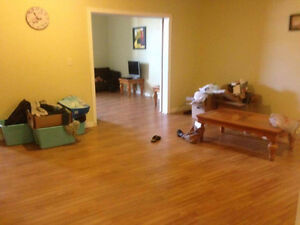 1 bedroom apartment for sublet. Yould terrace