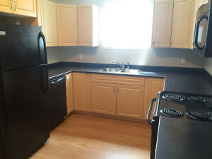 2 BEDROOM SUITE, BRIGHT & OPEN, NEAR FRANK ROSS