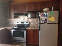 Stainless steal oven Frigidaire