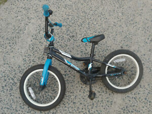 16 inch Giant Animator kids bicycle