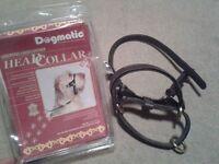 Size 4 Dogmatic head collar