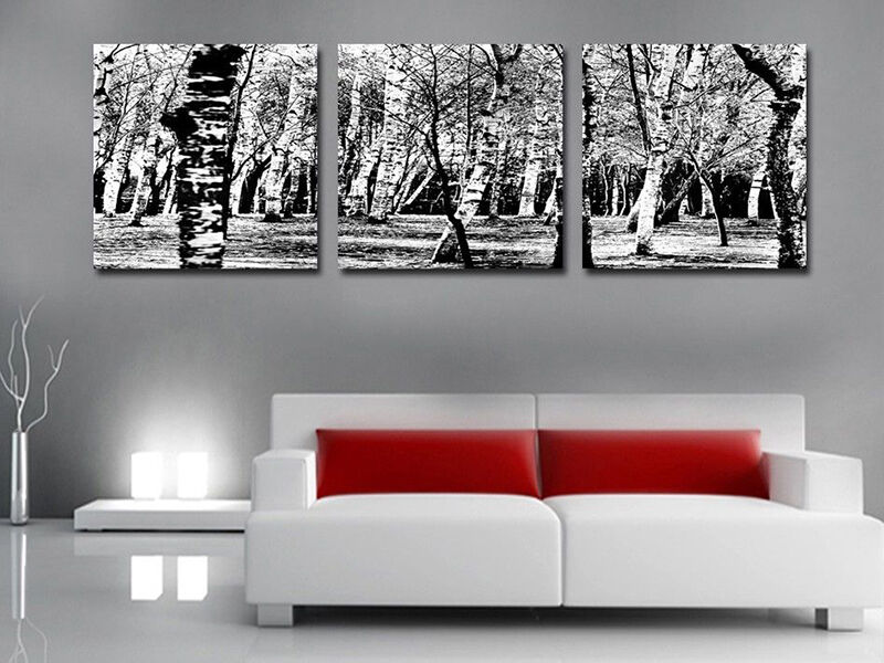 Creative Ways to Use Black and White Canvas Prints