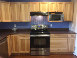 Kitchen Cabinets With Solid Wood Doors