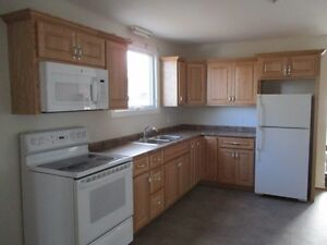 2 bedroom renovated apartment including washer & dryer