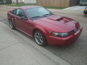 2003 Ford Mustang GT- Manual transmission