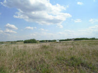 Acreage living close to the town of Wainwright!