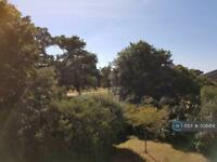 1 bedroom flat in Harrowdene Gardens, Teddington, TW11 (1 bed)