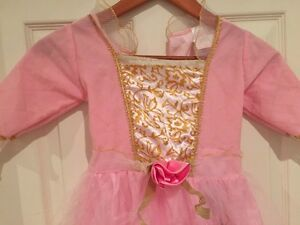 Cute princess gown  for dress up or Halloween  Kitchener / Waterloo Kitchener Area image 2