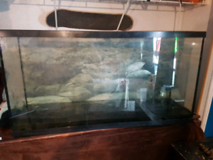 70 gallon tank with everything you need