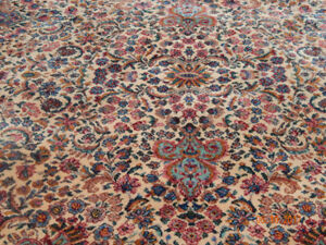 AREA RUG  - REDUCED PRICE!