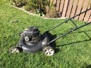 Briggs & Stratton Mower/Mulcer