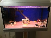 **COMPLETE FISH TANK WITH ALL ACCESSORIES, STAND & 2 FISH!
