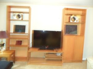 Entertainment Unit with CD/DVD Holders, includes a TV