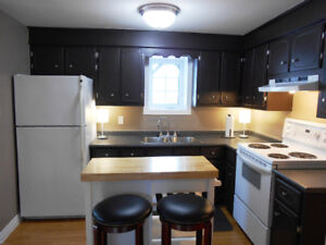 Available June 15 2018 - Large 1 Bedroom Apt Partially Furnished