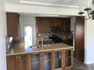 Renovated 5 Bedrooms Single House for Rent/ Coquitlam Como Lake