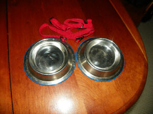 Cat Kitten Bowls and Harness London Ontario image 2