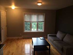 Amazing one bedroom condo in Bois-Franc (Ville St Laurent)