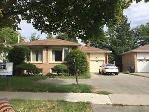 House for Rent In Toronto ( Bayview & Sheppard )