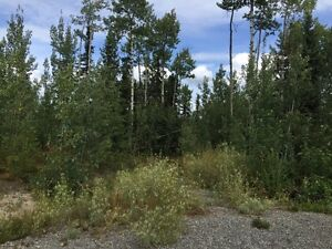 NEW PRICE! 6.3 acre lot in great Vanderhoof subdivision