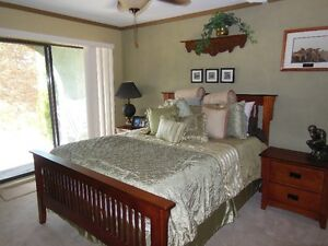 Room for Student in Executive Home Feb !st 2017
