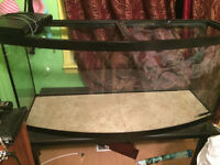100 Gallon Glass Tank Aquarium Terrarium
