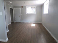 NEWLY RENOVATED 1 BEDROOM BASEMENT SUITE