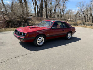 1982 Mustang GL 5.0 4sd T-top