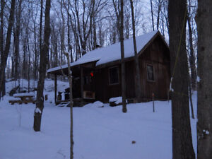 hunting camp and sugar bush Kingston Kingston Area image 1