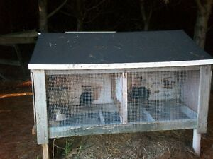 2 OUTDOOR RABBIT CAGES