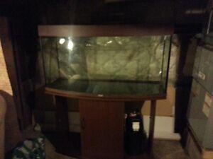 aquarium + support en bois 70 gallons.