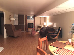 Bright and Spacious Basement Apartment