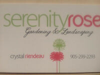 Serinity Rose Gardens and Landscaping