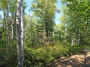 Nova Scotia wooded lot with Falls Lake access