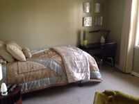Room for rent in MJ for Siast apprentice/ student