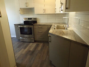 3 Bdrm northside townhouse completely renovated!