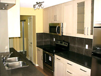 MOST AFFORDABLE IKEA KITCHEN INSTALL IN WINDSOR ESSEX COUNTY!