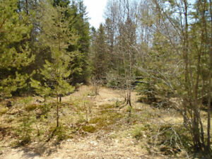 $13,500 Excellent in town building lot