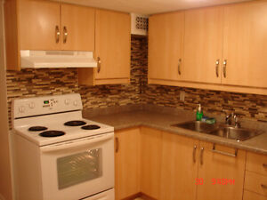 Pickering Very Large 1 BR Basement Apartment walk to GO