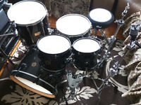DW Jazz Series Maple-Gum Shell