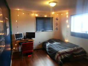 Summer Sublet steps from Dal Only $440