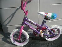 Little Girl's Bicycle 12 1/2""