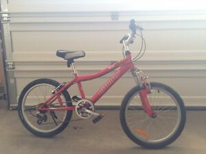 Infinity mountain bike in great condition  or best offer
