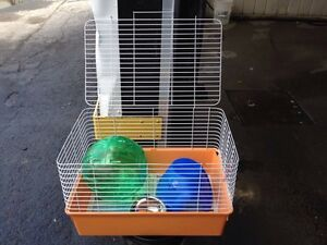 Cage, exercise ball,house,water and food dish