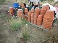 garden planter pots