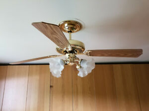 Ceiling Fan - 42 in, 4 blade, brass accents w/wood blades