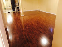 Prime Location-Renovated-Basement Apartment for Rent!