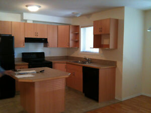 Shire Apartments - 2 bdrm/2 bath