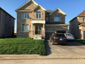 Room For Ren in Newcastle / Bowmanville