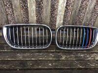 BMW E46 FRONT GRILLES